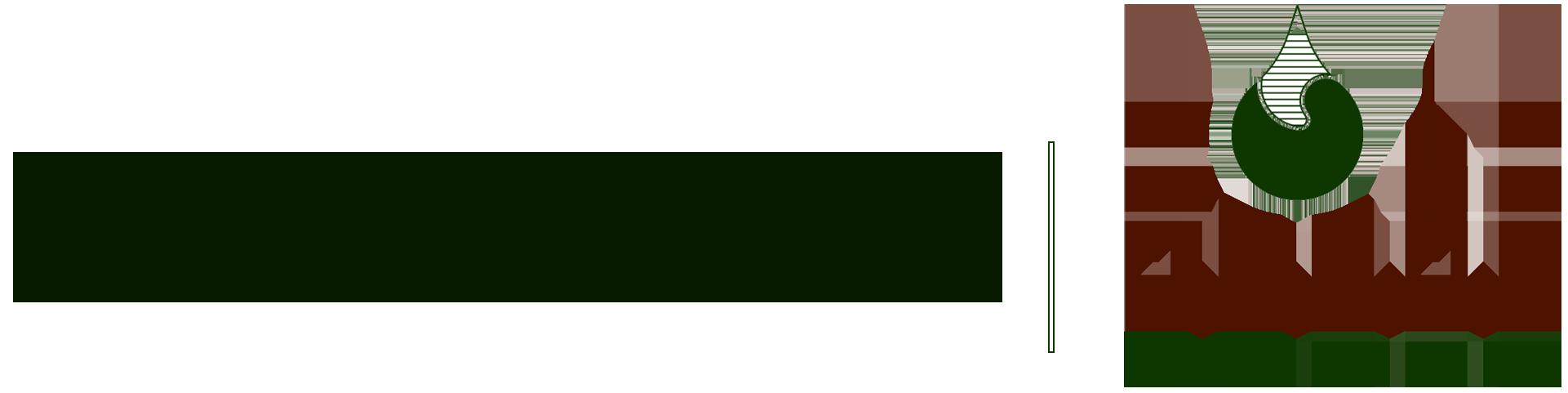 شركة تقنية ليبيا للأعمال الهندسية